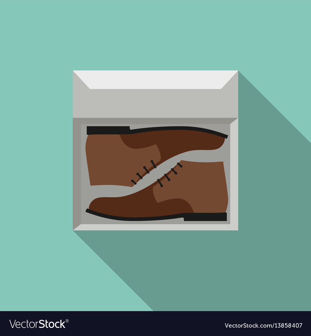 Brown shoes in box