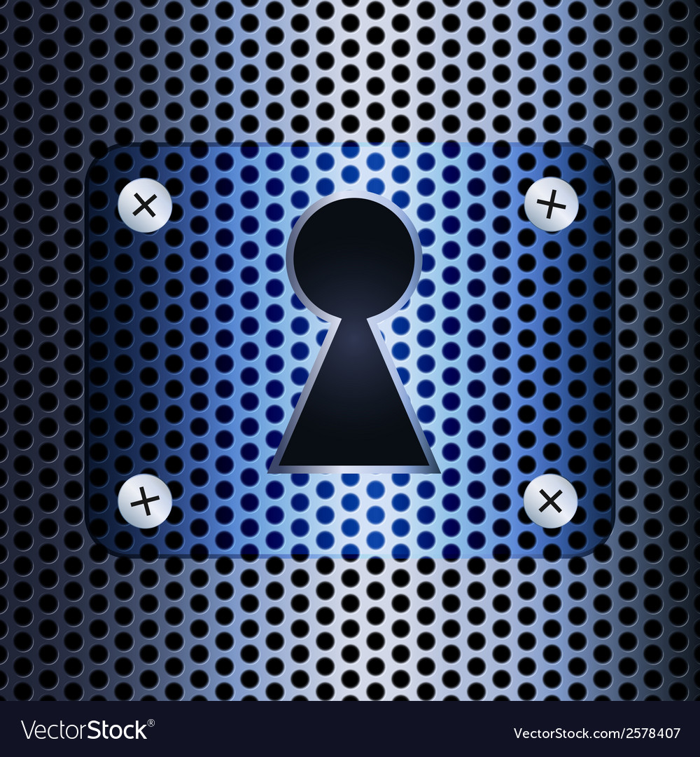 Keyhole on a metal grid vector image