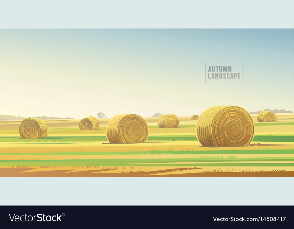 Autumn rural landscape from agricultural field vector image