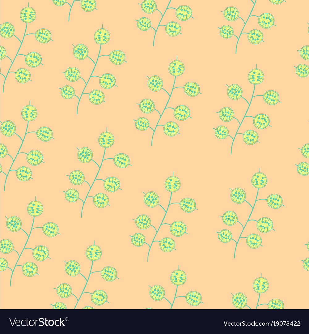 Lunaria exotic flower on pink - seamless doodle
