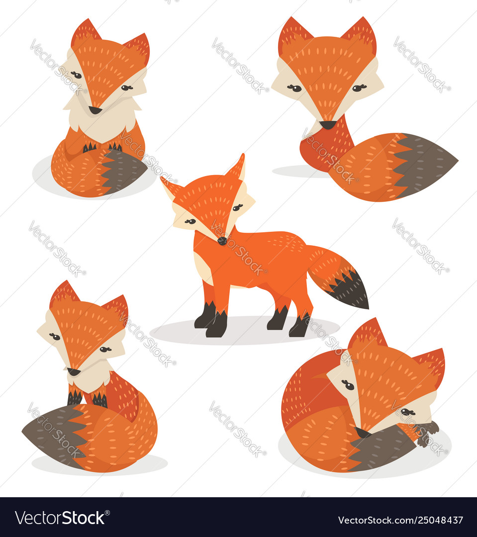Cute foxes cartoon set in different poses
