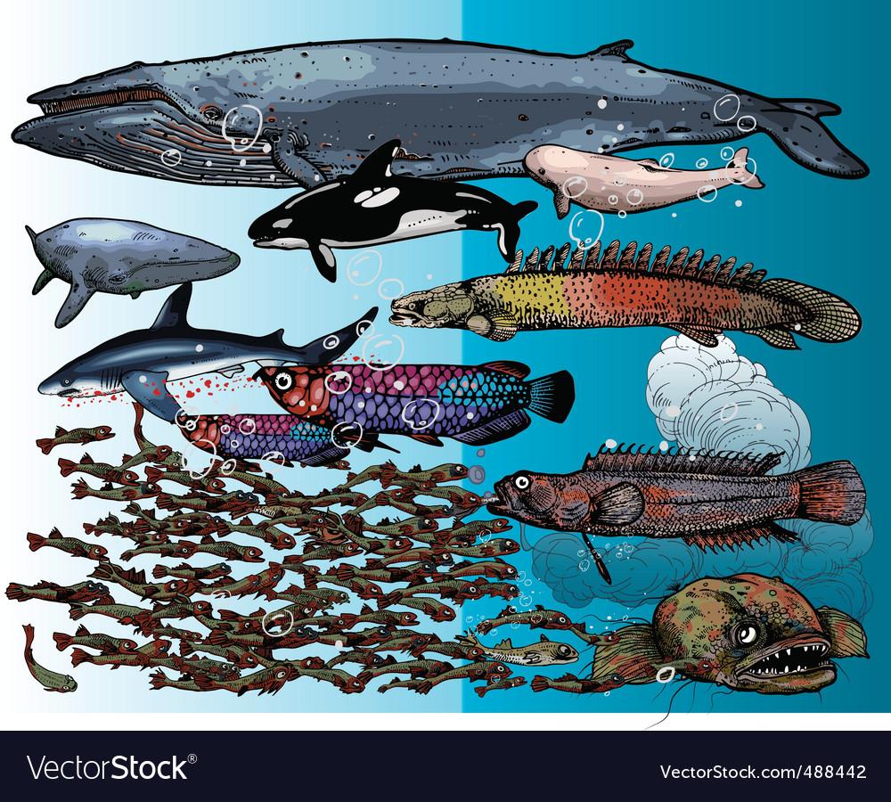 Underwater beings