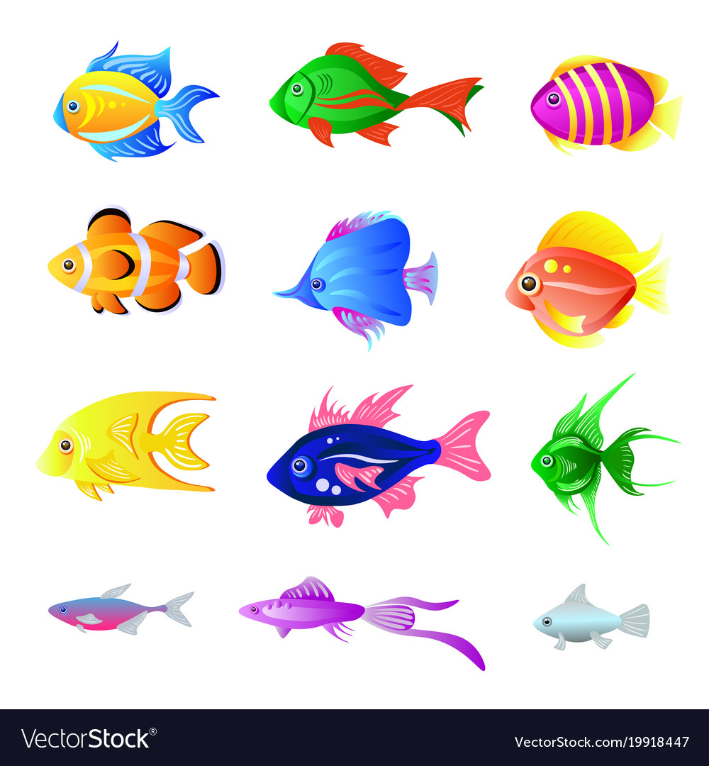 Set of bright fish isolated on the white