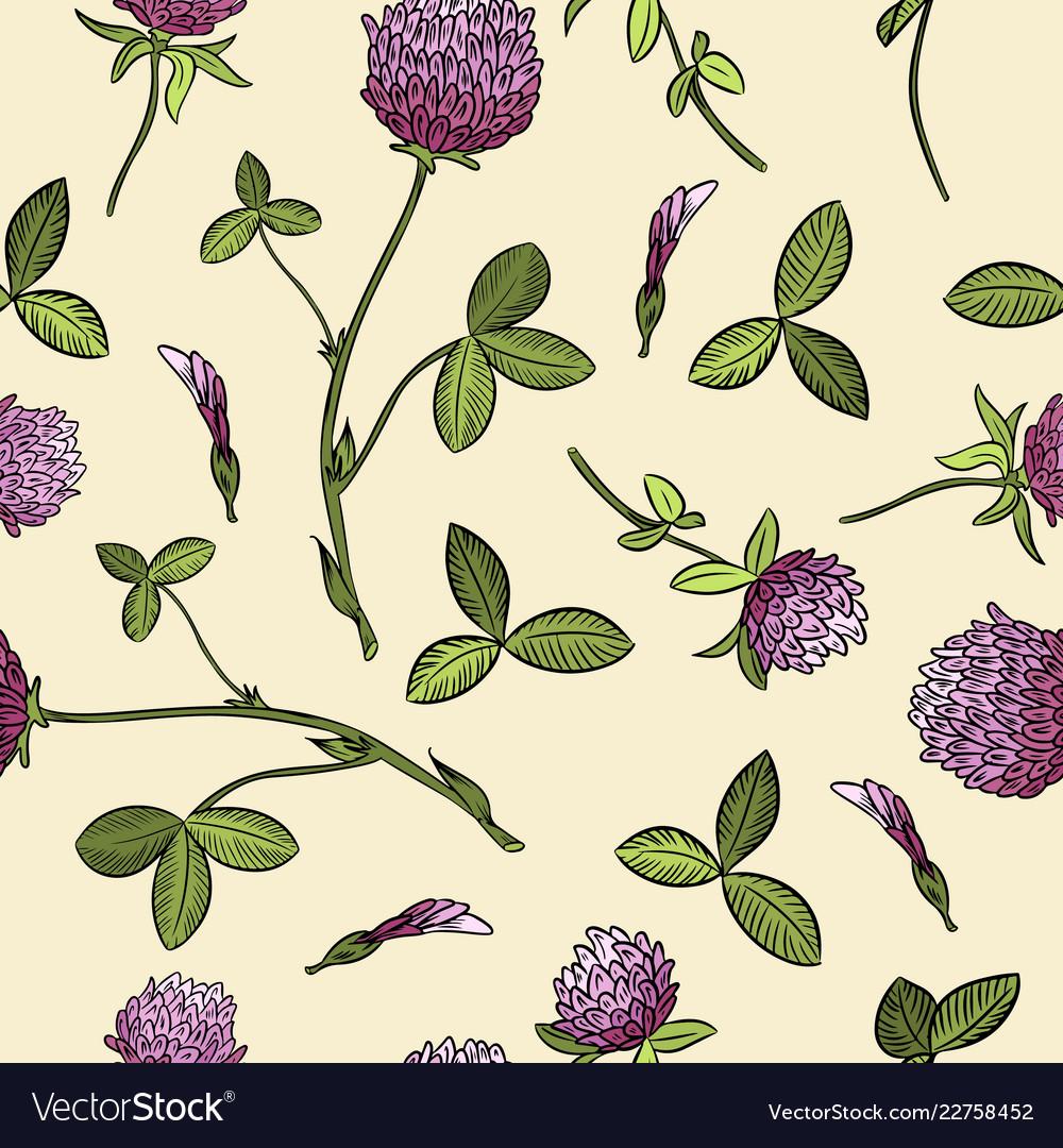Red clover botanical seamless pattern