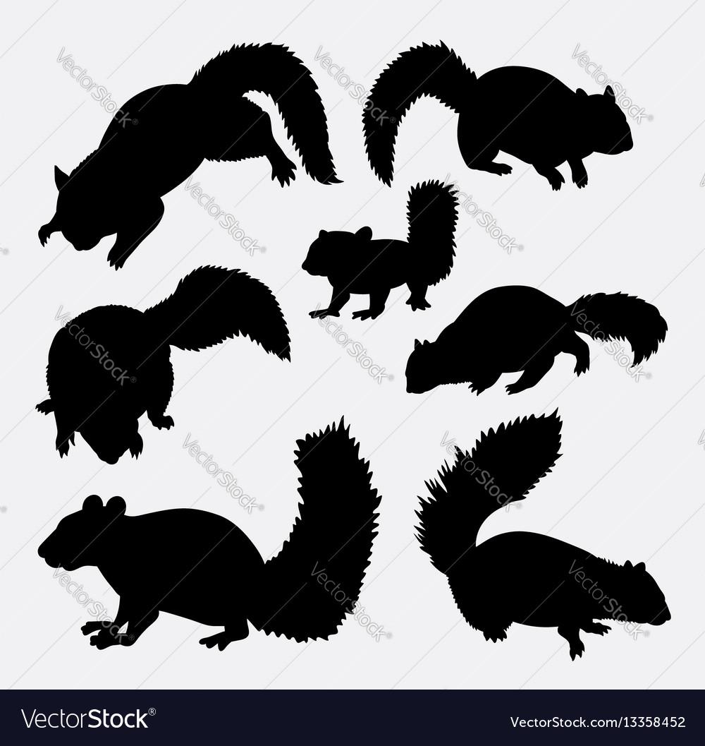 Squirrel mammal animal silhouette