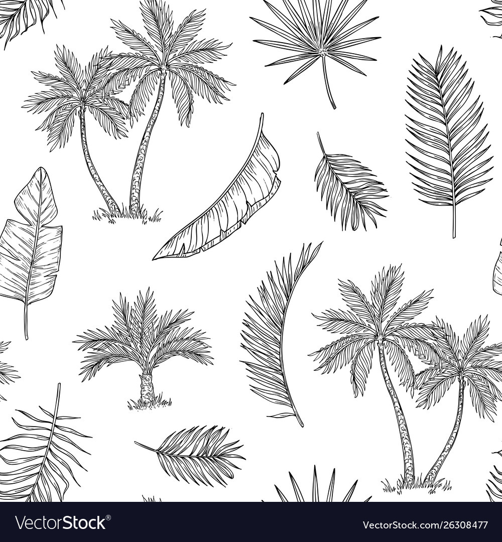 Palm tree seamless background tropical coconut