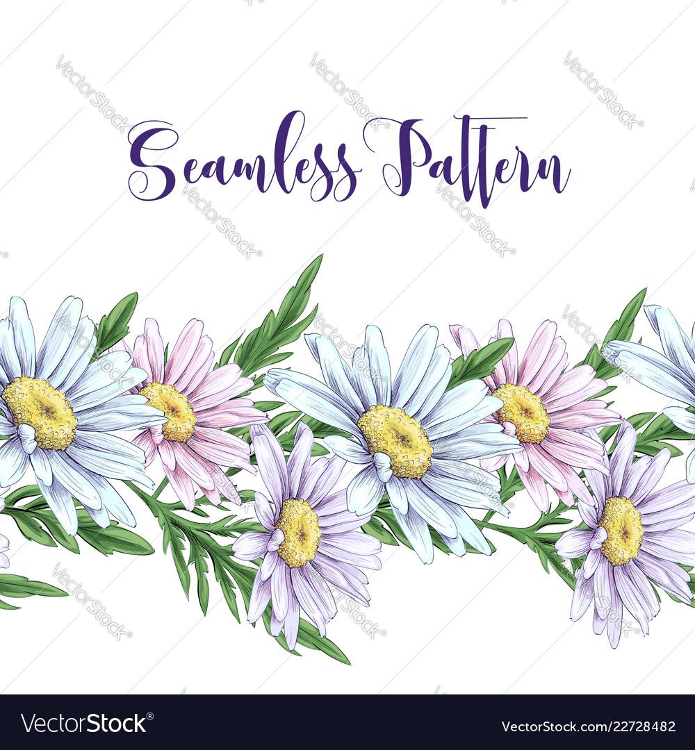 Seamless border with white roses daisies