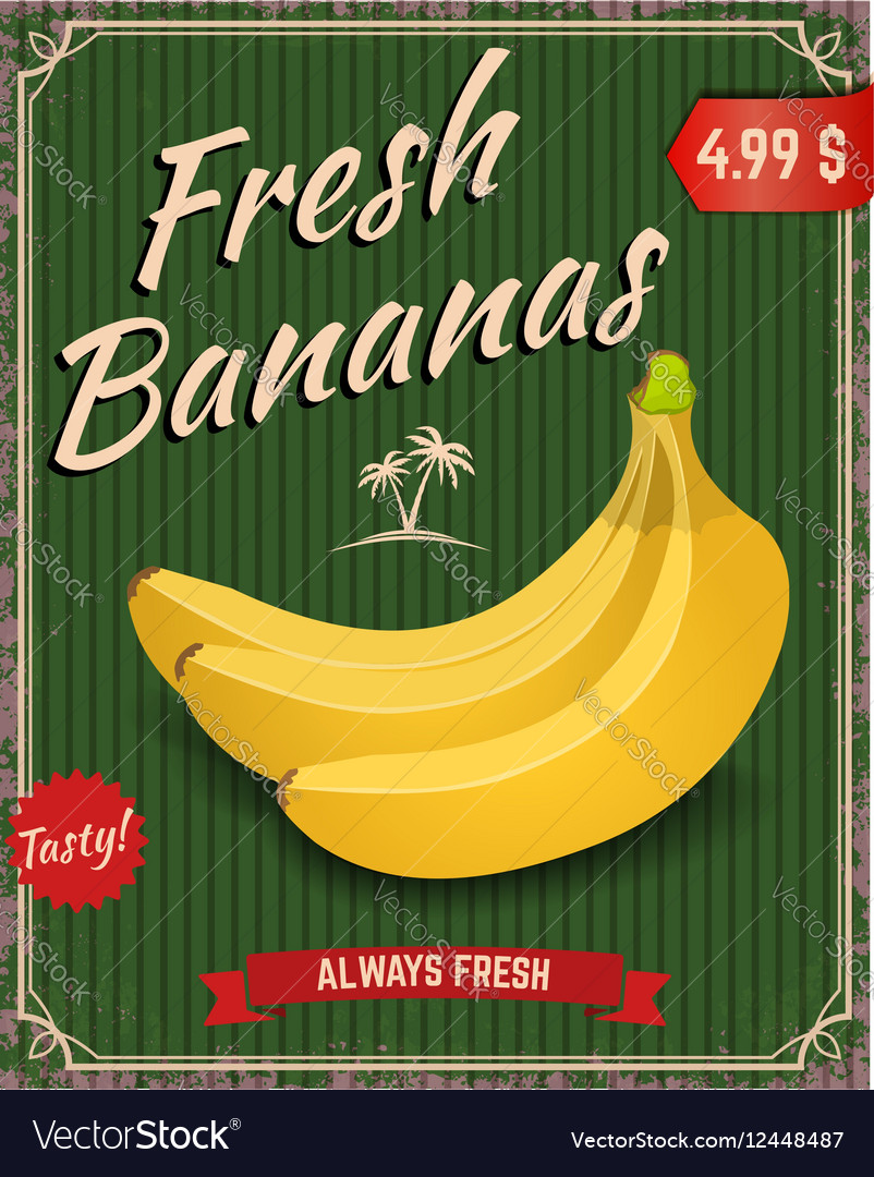 Fresh bananas Banana in retro style