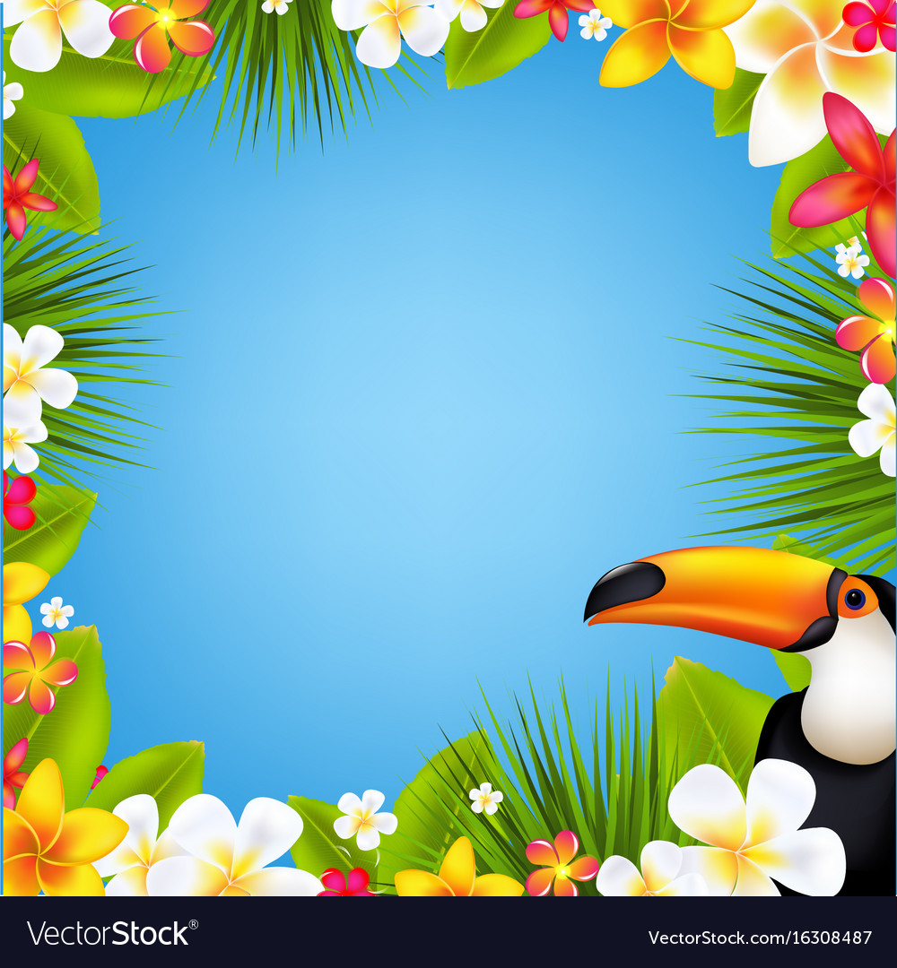 Sale banner with frangipani