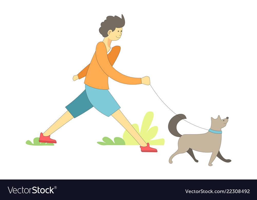 Dog on leash with owner boy walking pet