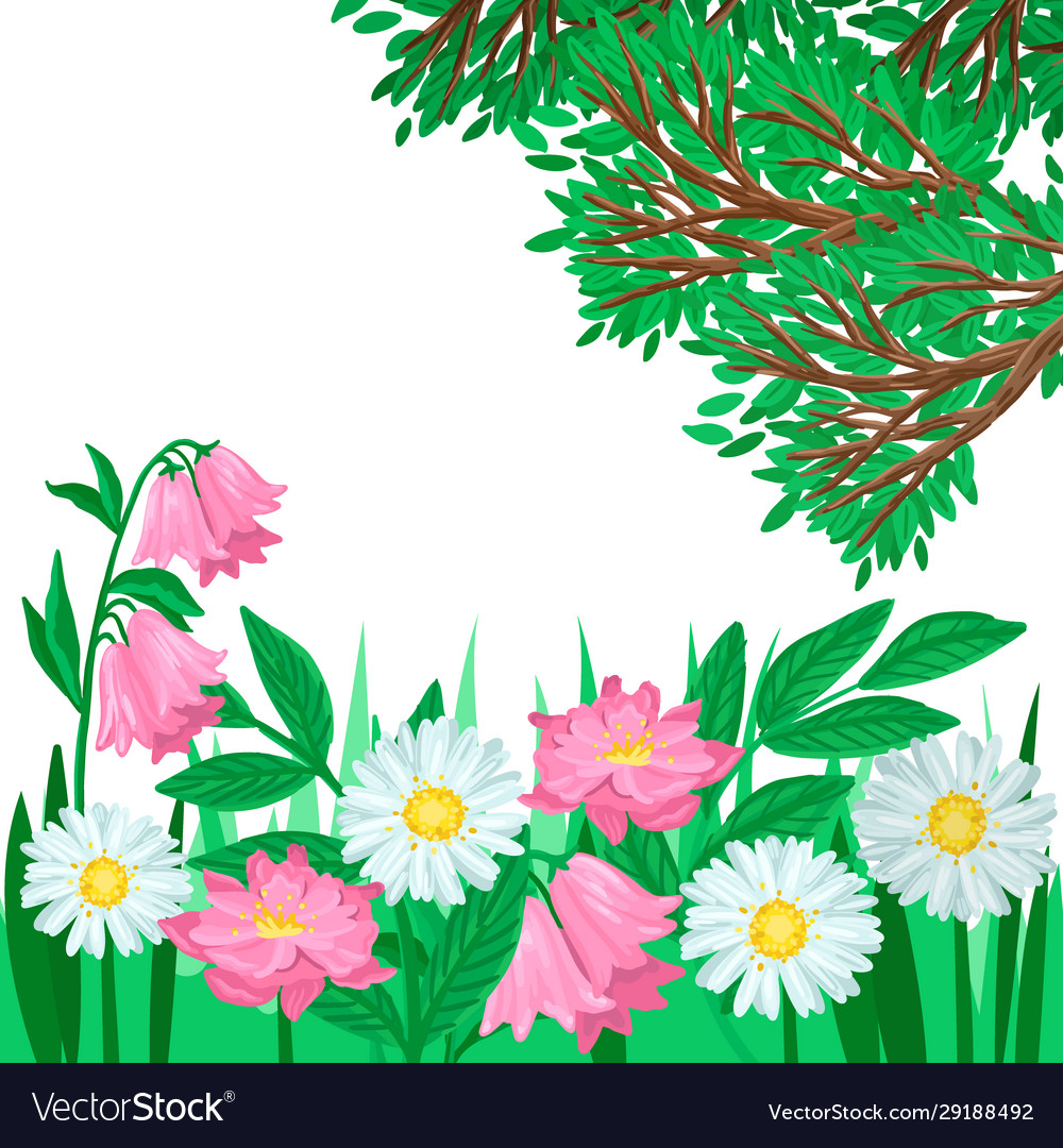 Summer Landscape Grass And Blooming Flowers Vector Image
