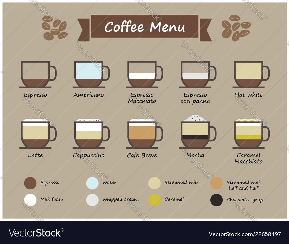 Set of coffee type and menu infographic cup of