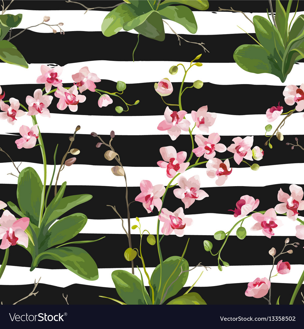 Orchid tropical leaves and flowers background vector image