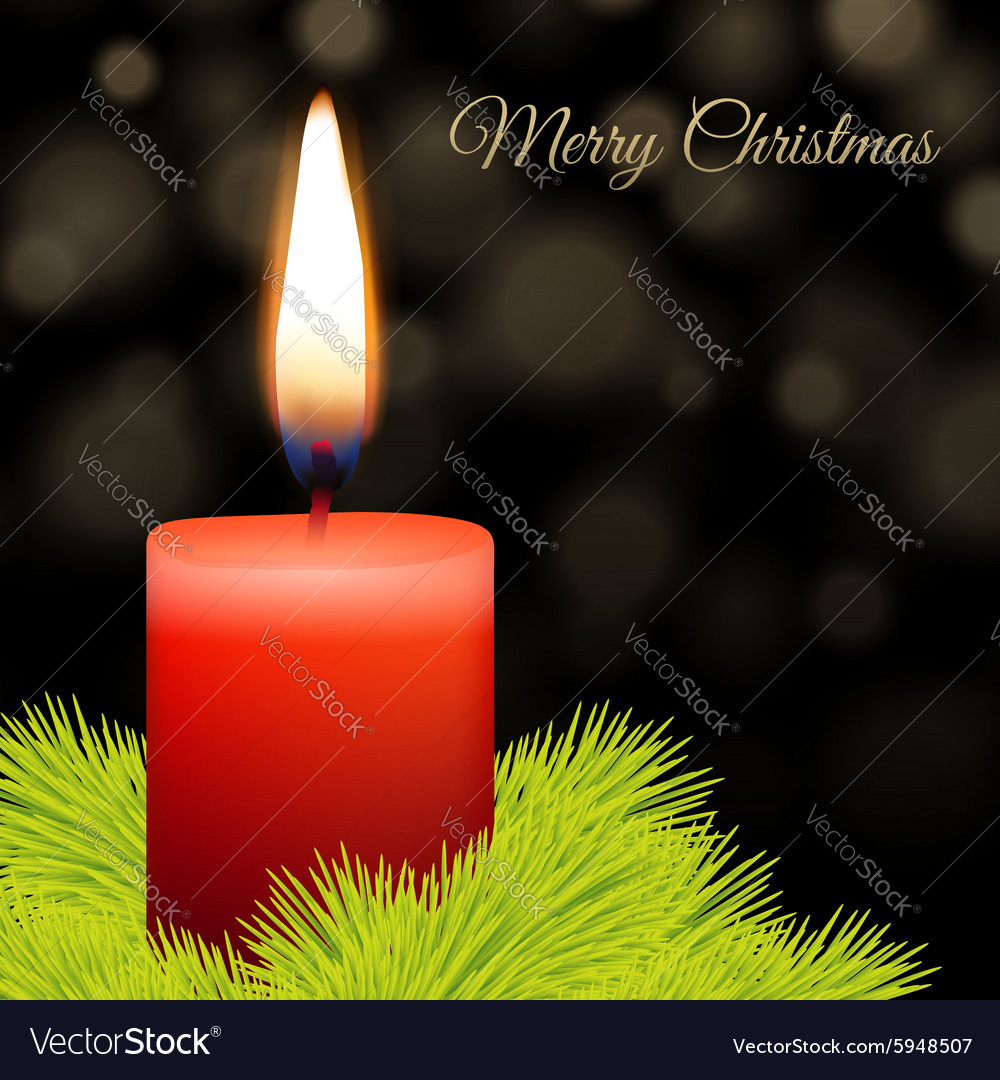 Candle and fir