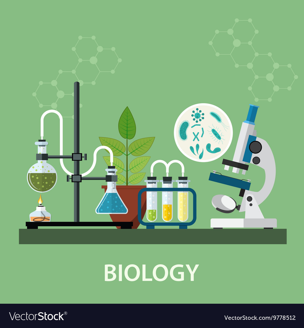 biology laboratory workspace royalty free vector image