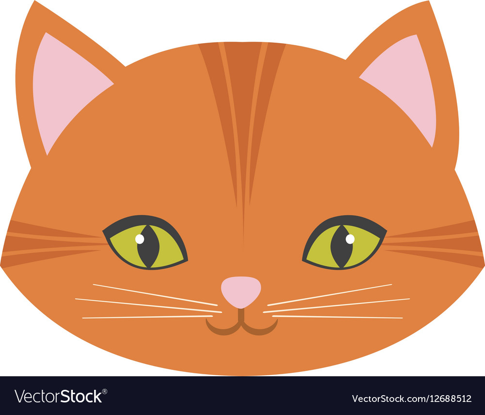 Cute cat face pink nose mustache vector image