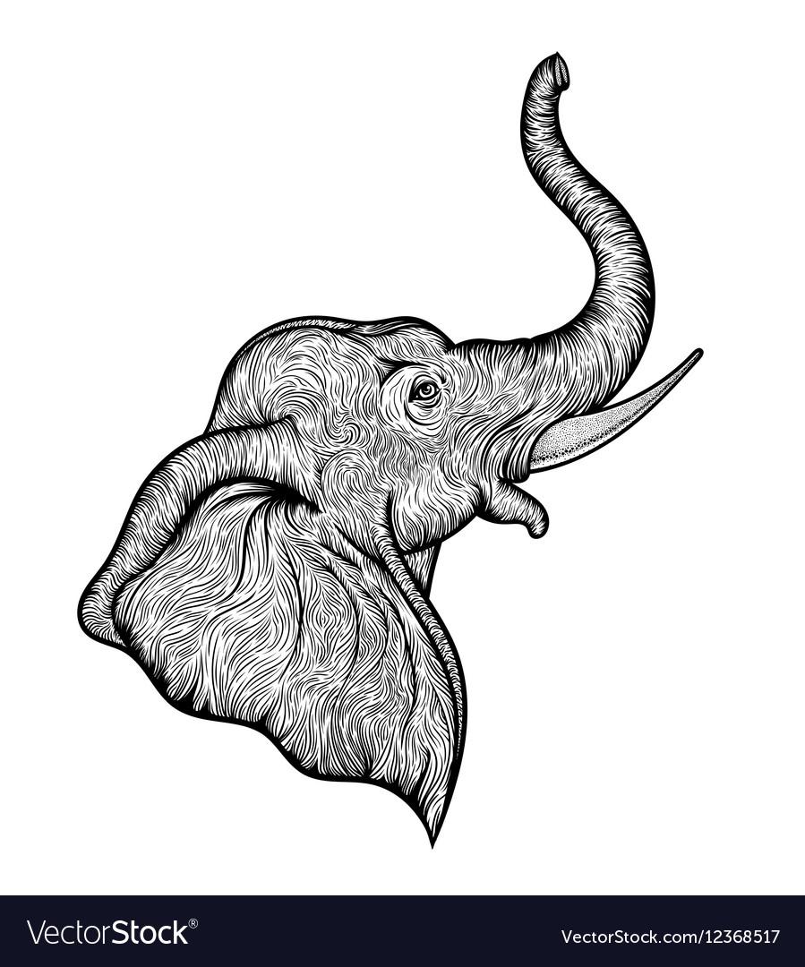 Head elephant in profile line art boho design
