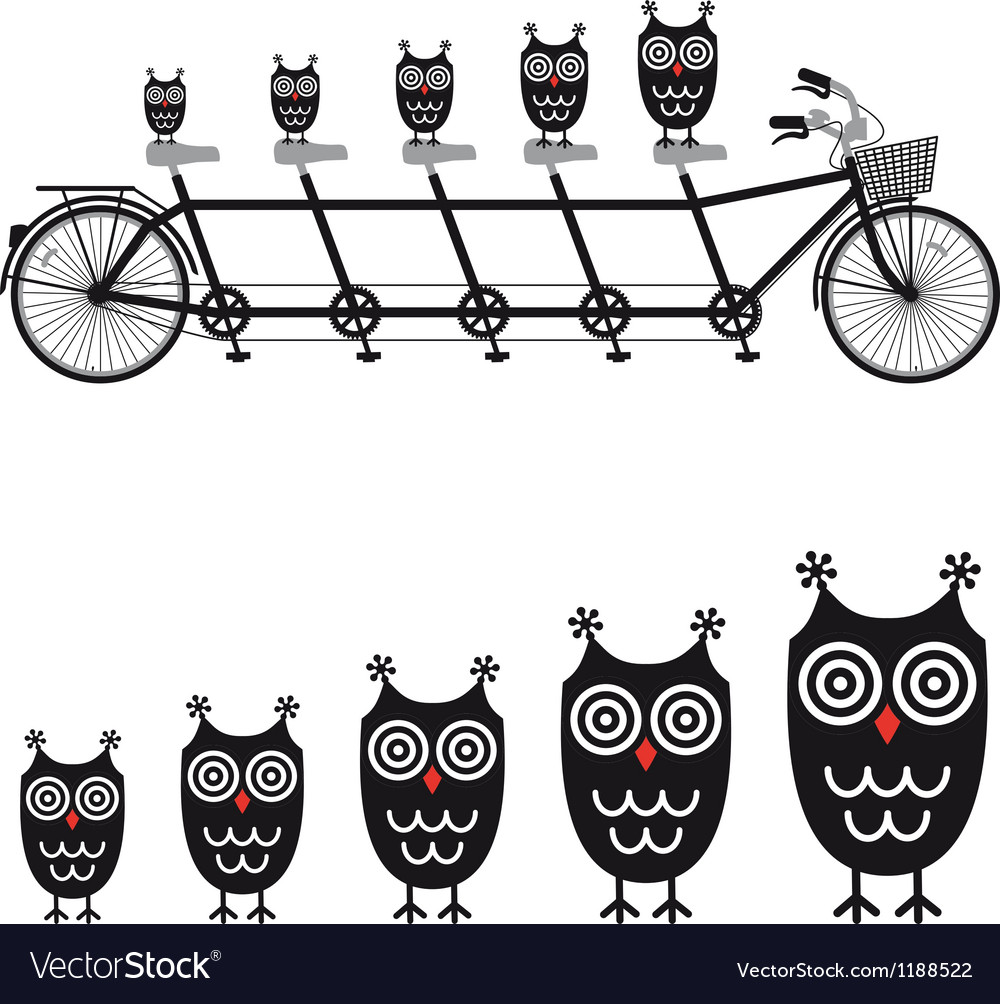 Cute owls on tandem bicycle