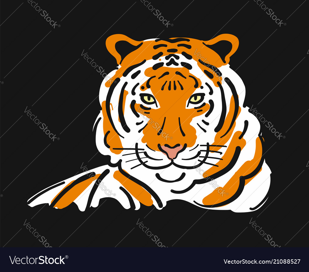 Tiger sketch for your design vector image