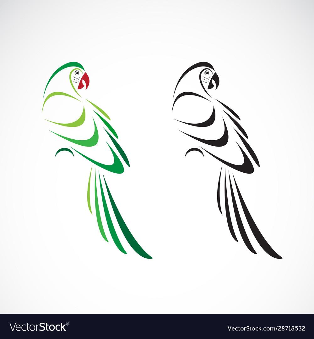 Parrot design on white background bird icon
