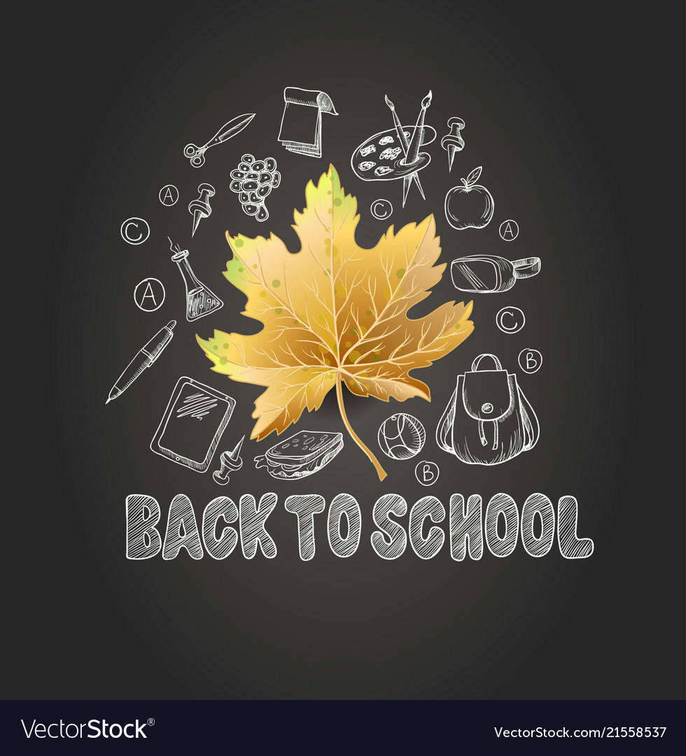 Banner back to school with realistic leaves