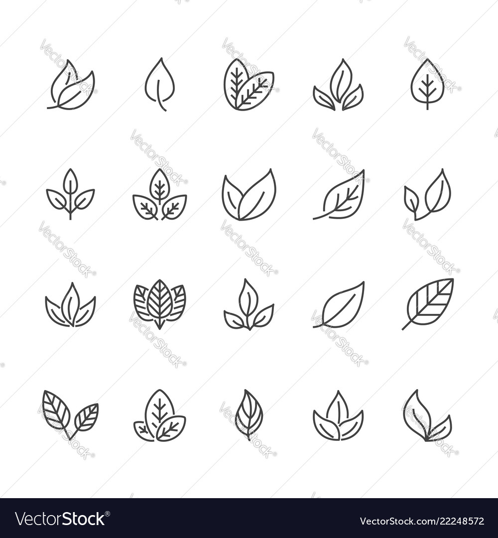 Leaf flat line icons plant tree leaves
