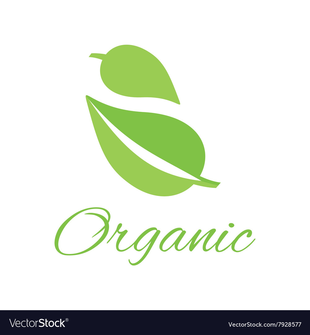 Organic Logo Green Leaf Design Flat