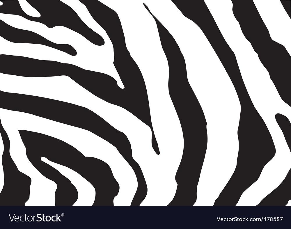 zebra print royalty free vector image vectorstock rh vectorstock com animal print cebra vector zebra print seamless vector