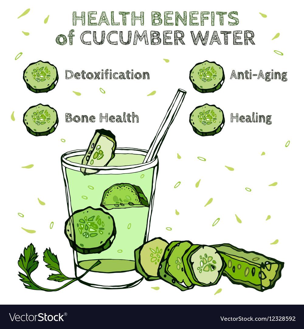 Cucumber Benefits Image