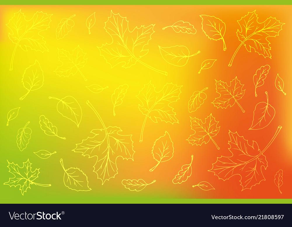 Leaves outline on blurred orange background
