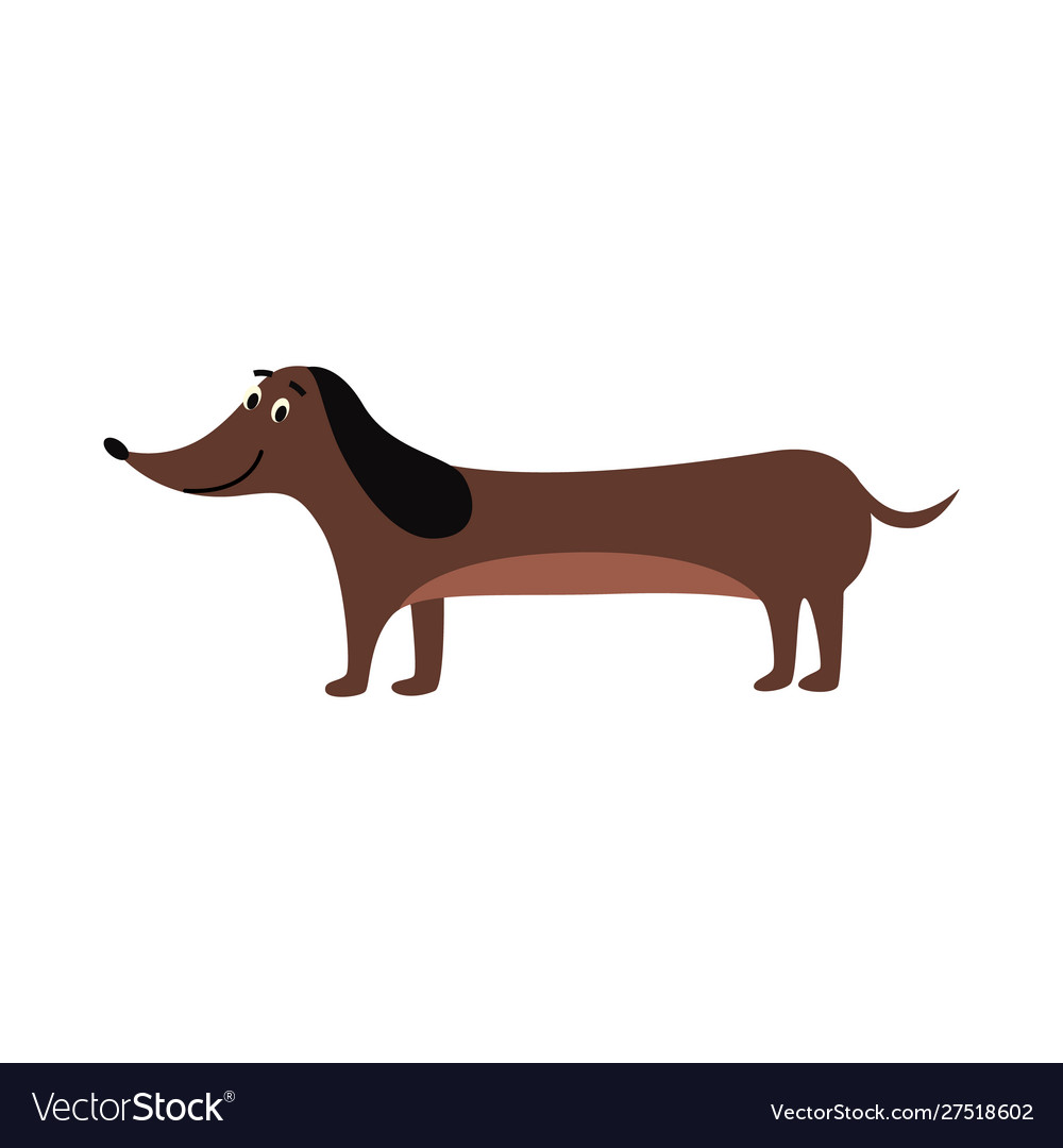 Dachshund Drawing Cute Brown Sausage Dog Vector Image