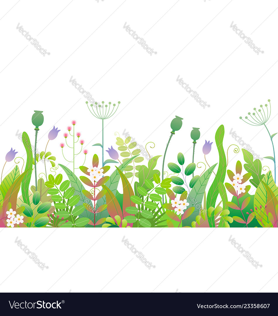 Spring floral seamless border with green plants