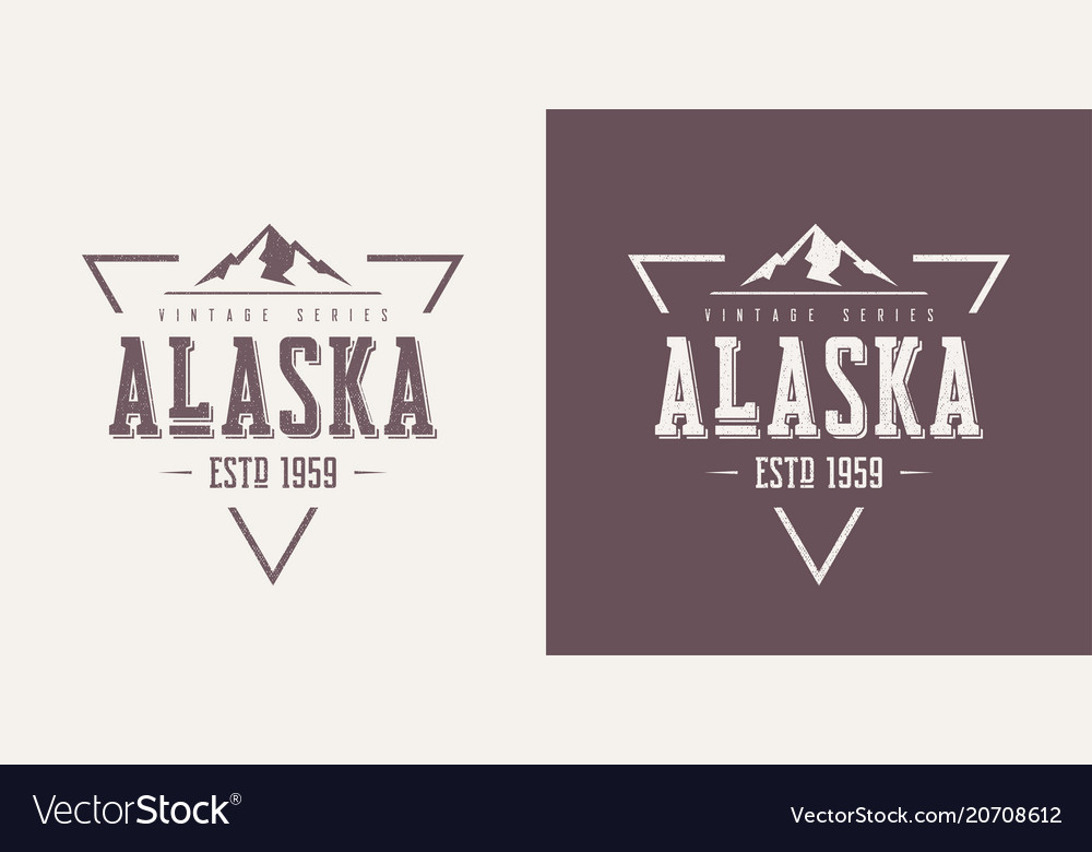 Alaska state textured vintage t-shirt and