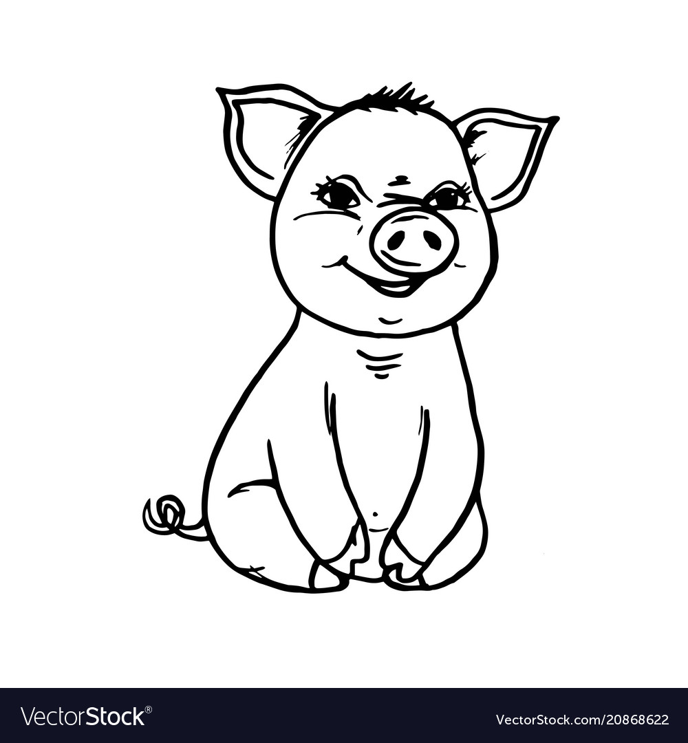 Doodle pig sitting and smiling