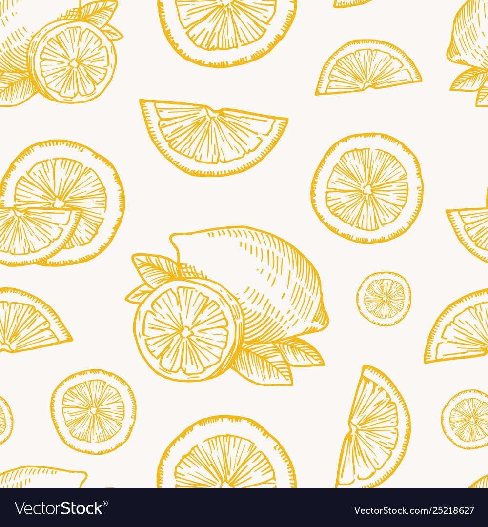 Hand drawn lemon orange or tangerine harvest
