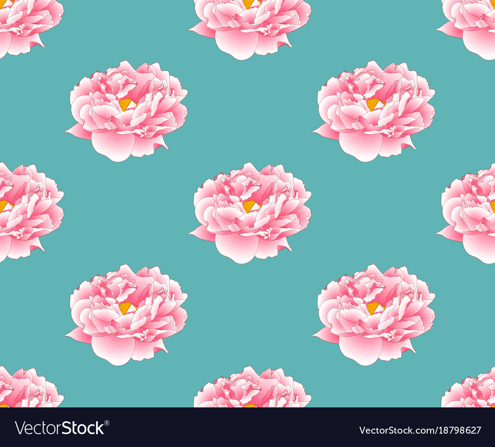 Pink peony on green teal background vector image
