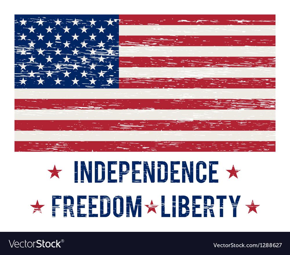 USA flag vintage vector image
