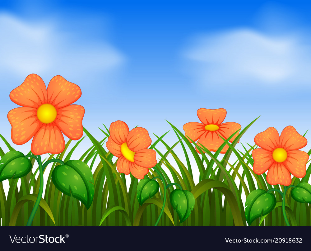 Background scene with flowers in garden