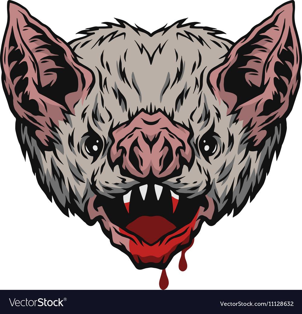 Head vampire bat