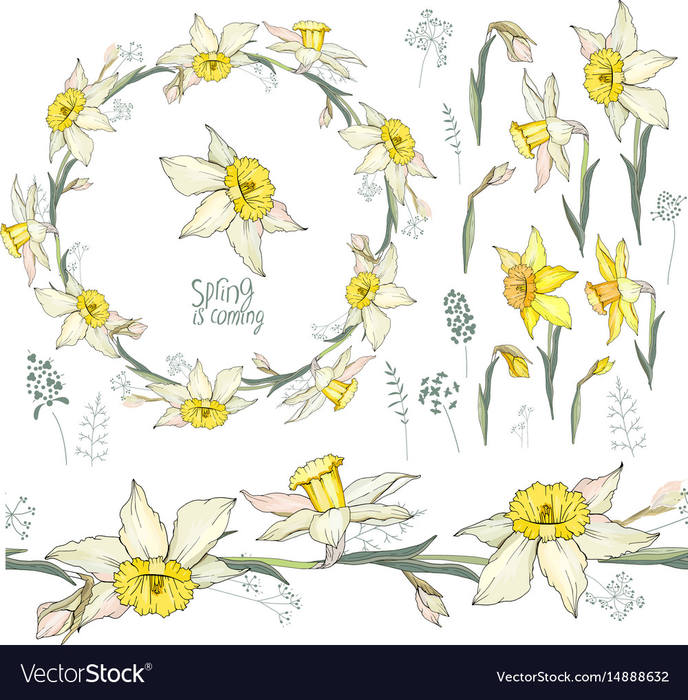 Round frame with pretty yellow daffodils festive Vector Image