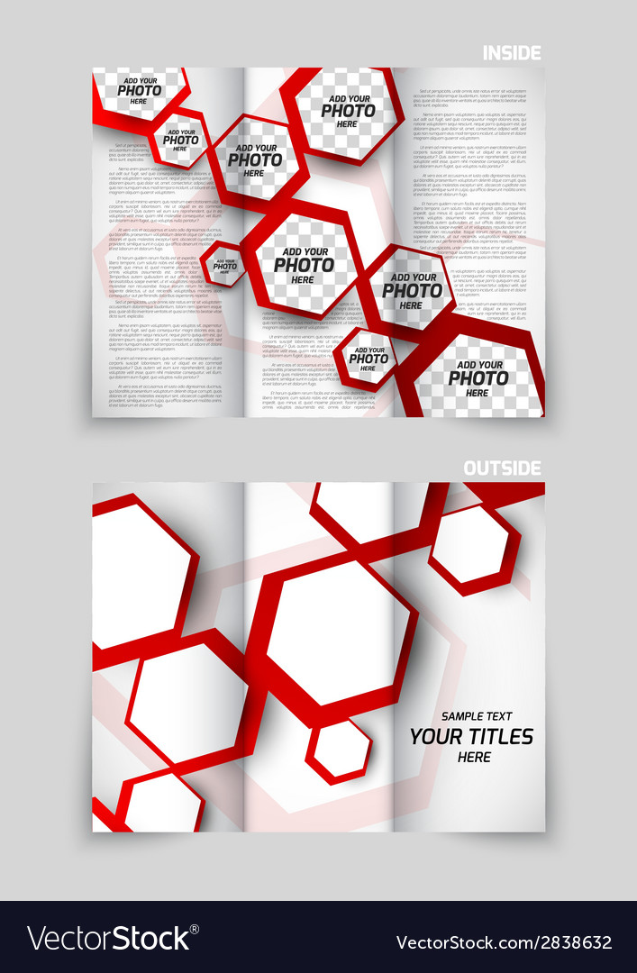 tri fold brochure template design royalty free vector image