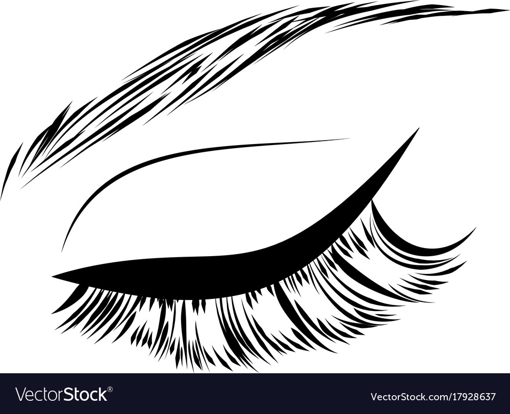 Brow stylist vector images 53