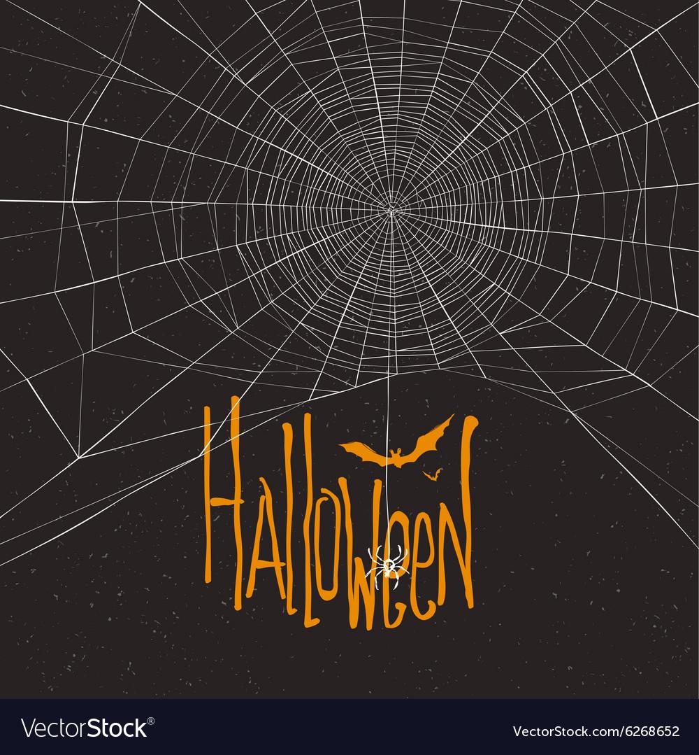 Halloween background spider webb