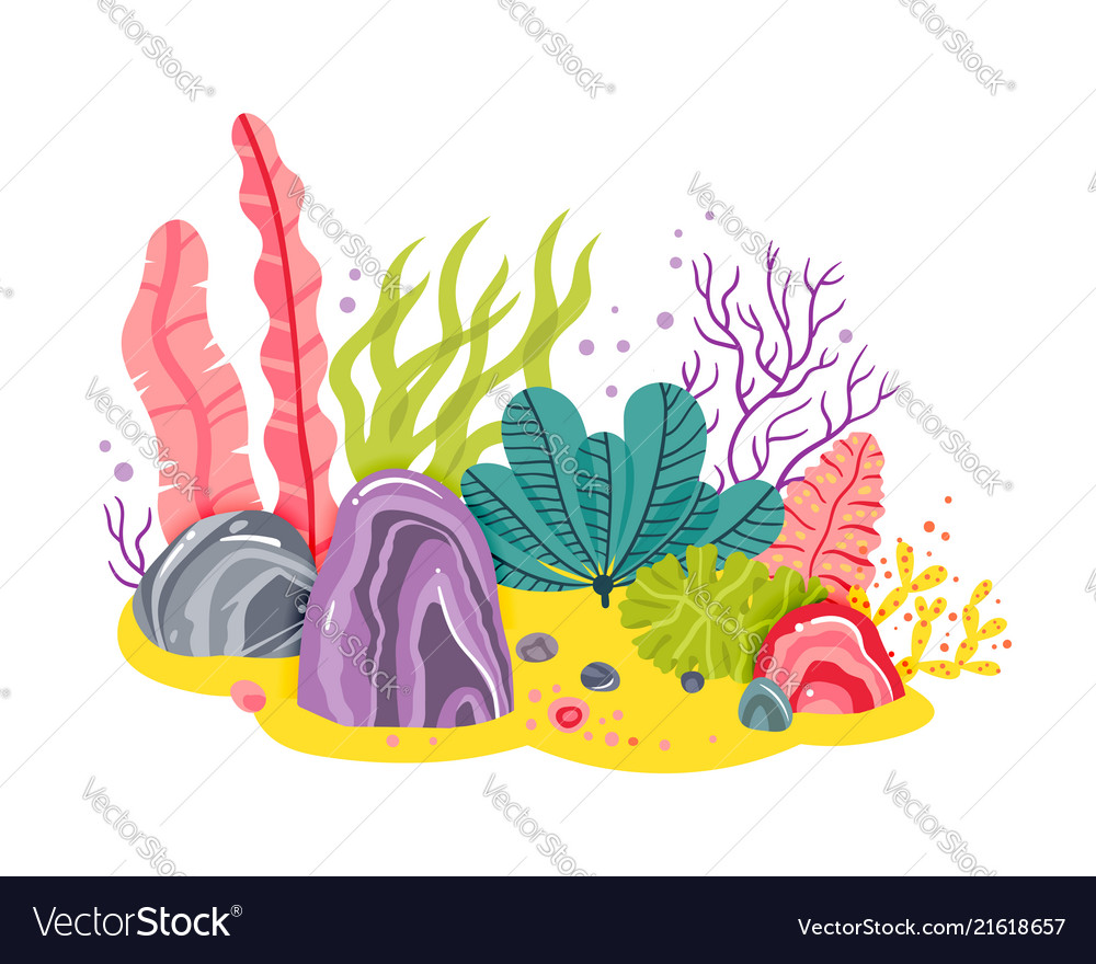 Background with ocean bottom corals reefs