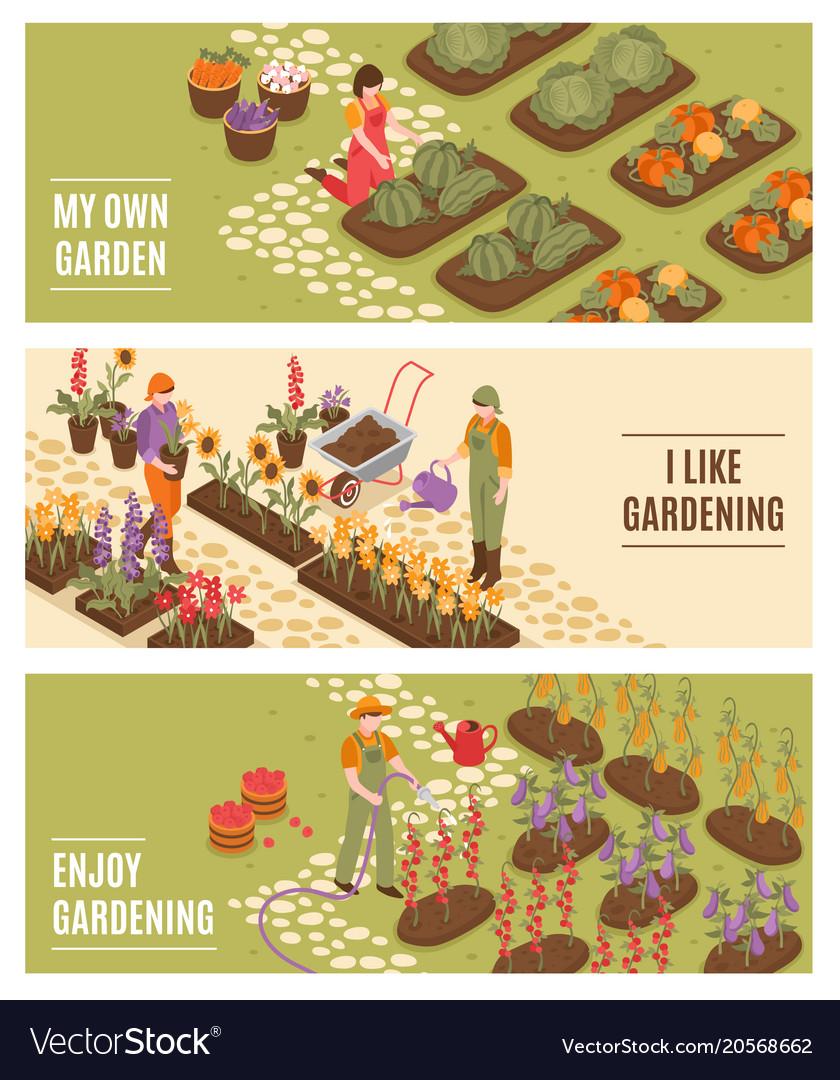Gardening isometric banners set vector image