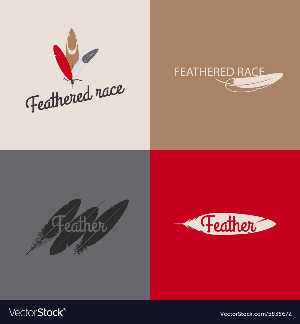 Feather logo templates vector image