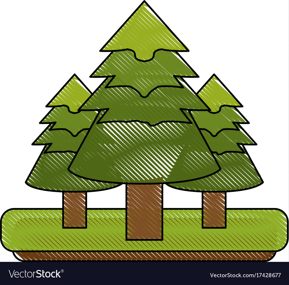 Pine tree forest icon image