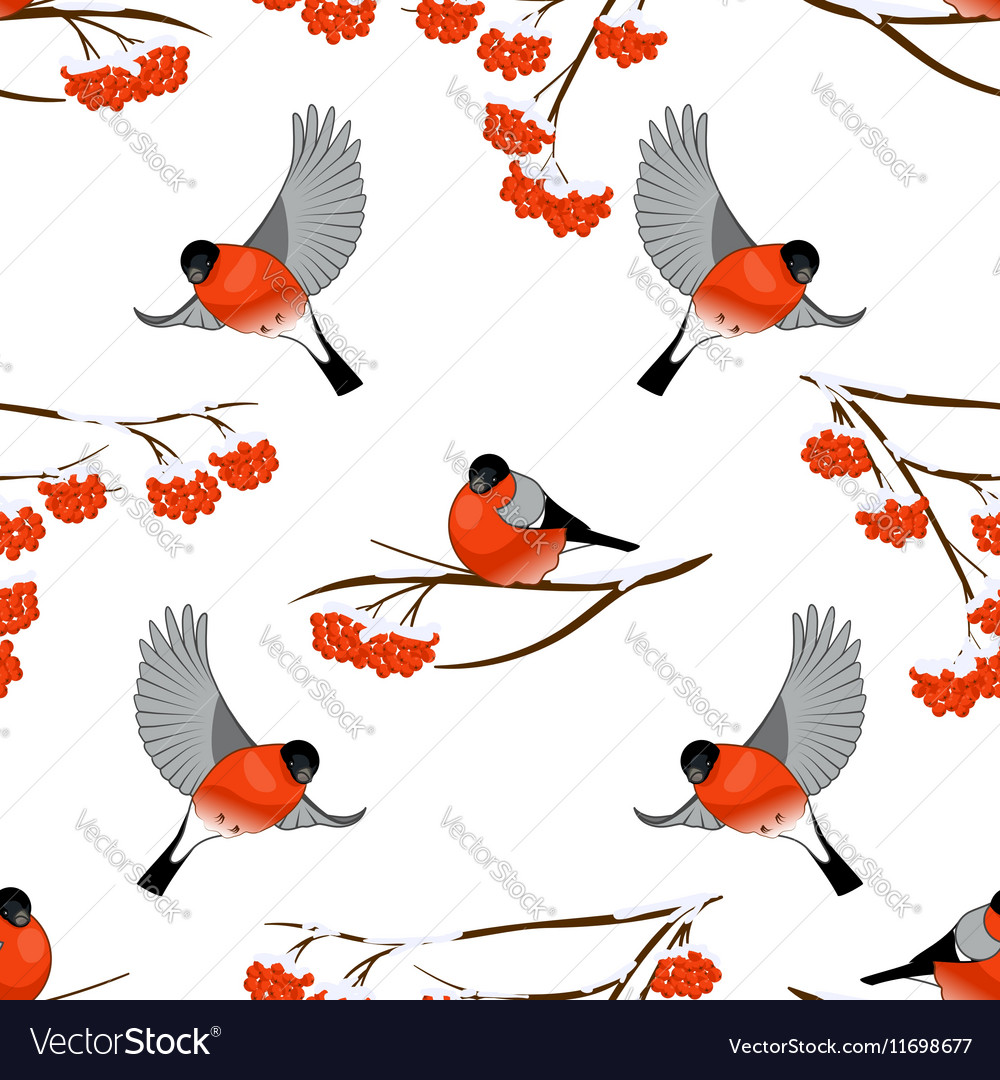 Seamless pattern with bullfinches and branch of