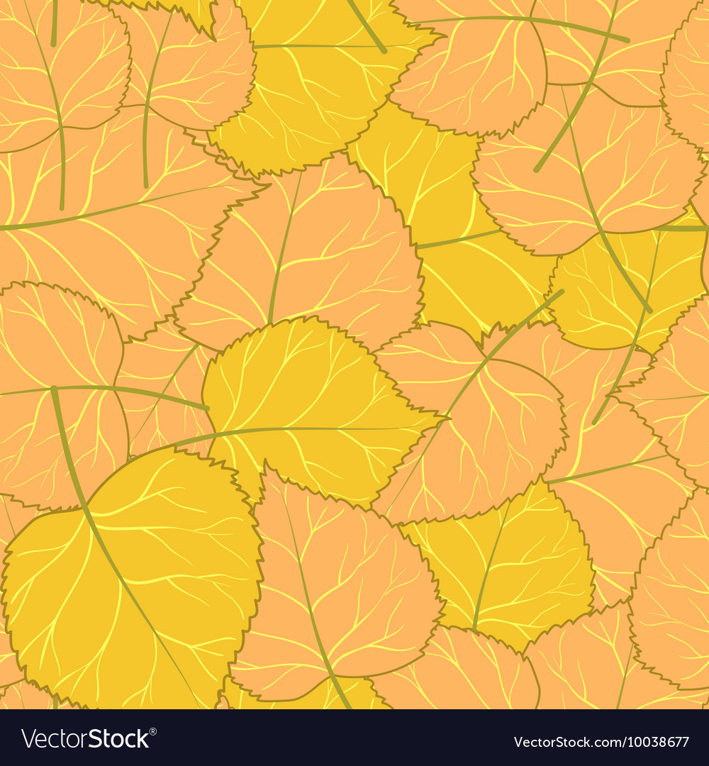 Yellow autumn pattern of leaves