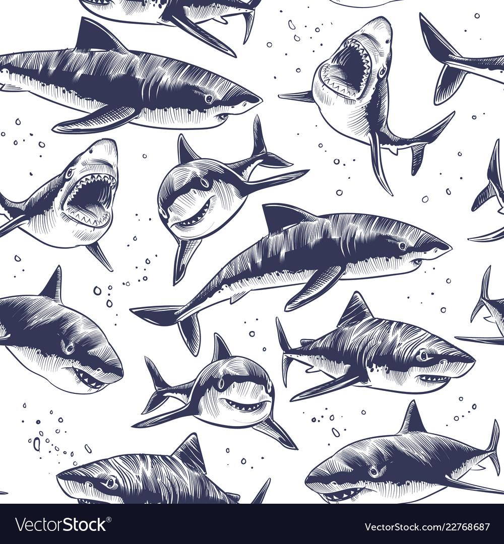 Sharks seamless pattern hand drawn underwater sea